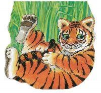 Cover image for Pocket Tiger